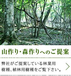 山作り・森作りへのご提案